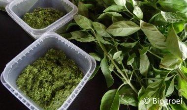 pesto maken van basilicum