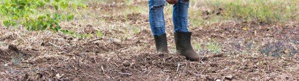 Waarom is onze bodem zo belangrijk?