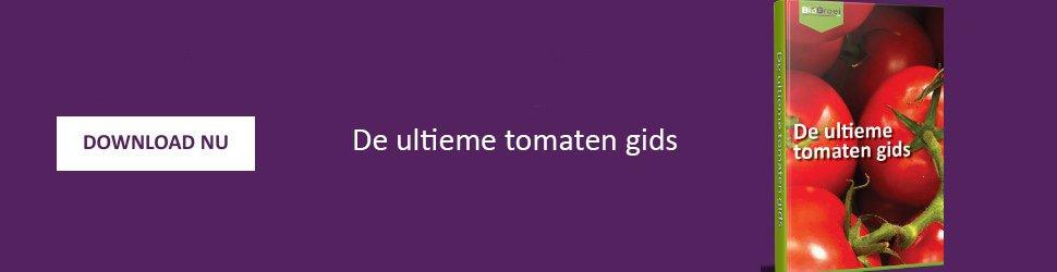 Tomaten gids