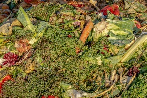 Wat mag er op de composthoop?