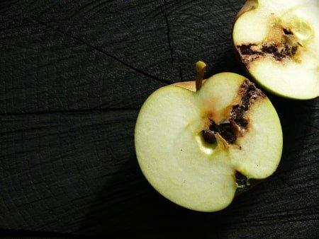 schade fruitmot aan appels